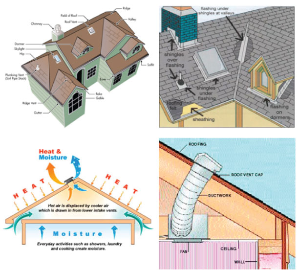 roof-education-victoria-bc